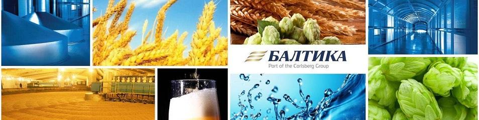 балтика компания логотип тест