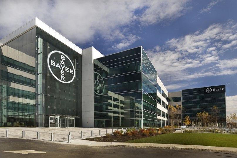 Bayer главный офис