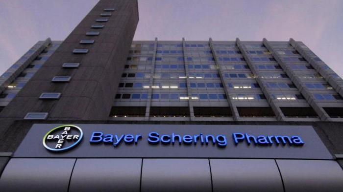 Bayer офис