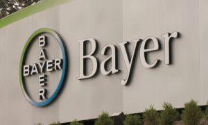 Bayer вакансии работа в россии и снг