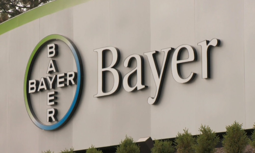 Bayer – о компании, условиях работы и найма сотрудников